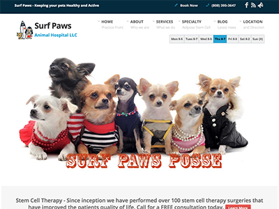Surf Paws Animal Hospital